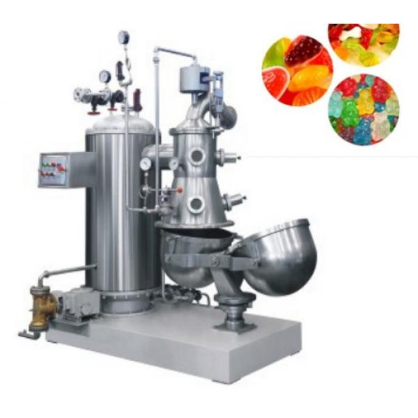 Fast Delivery Frozen Food Hard Candy Dry Nuts Food Packing Machine Back Seal