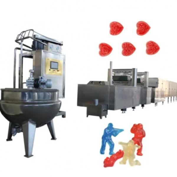 Gd450 Gummy Bear Candy Making Machinery for Sale