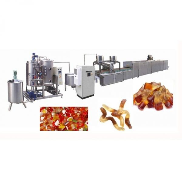 Kids Biscuit Cookies Gummy Bear Candy Multihead Packing Machine